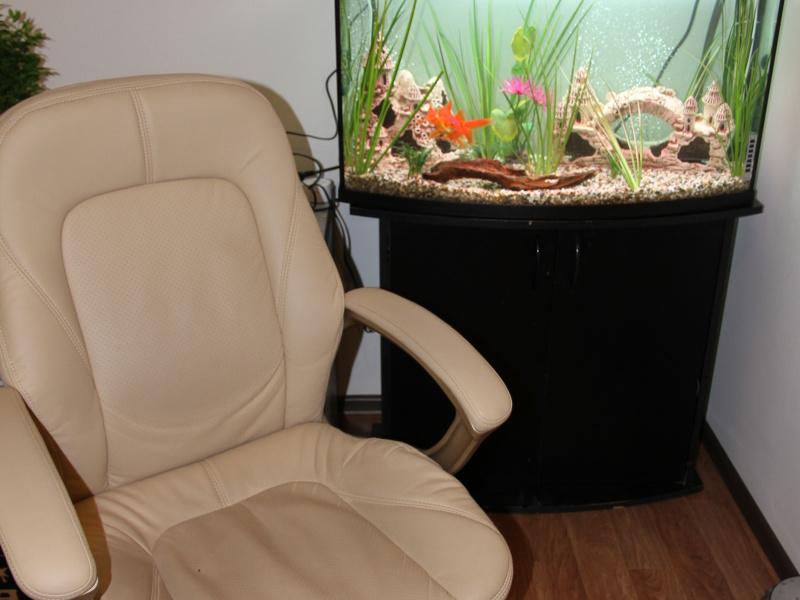 Оливковая комната для индивидуального приема
